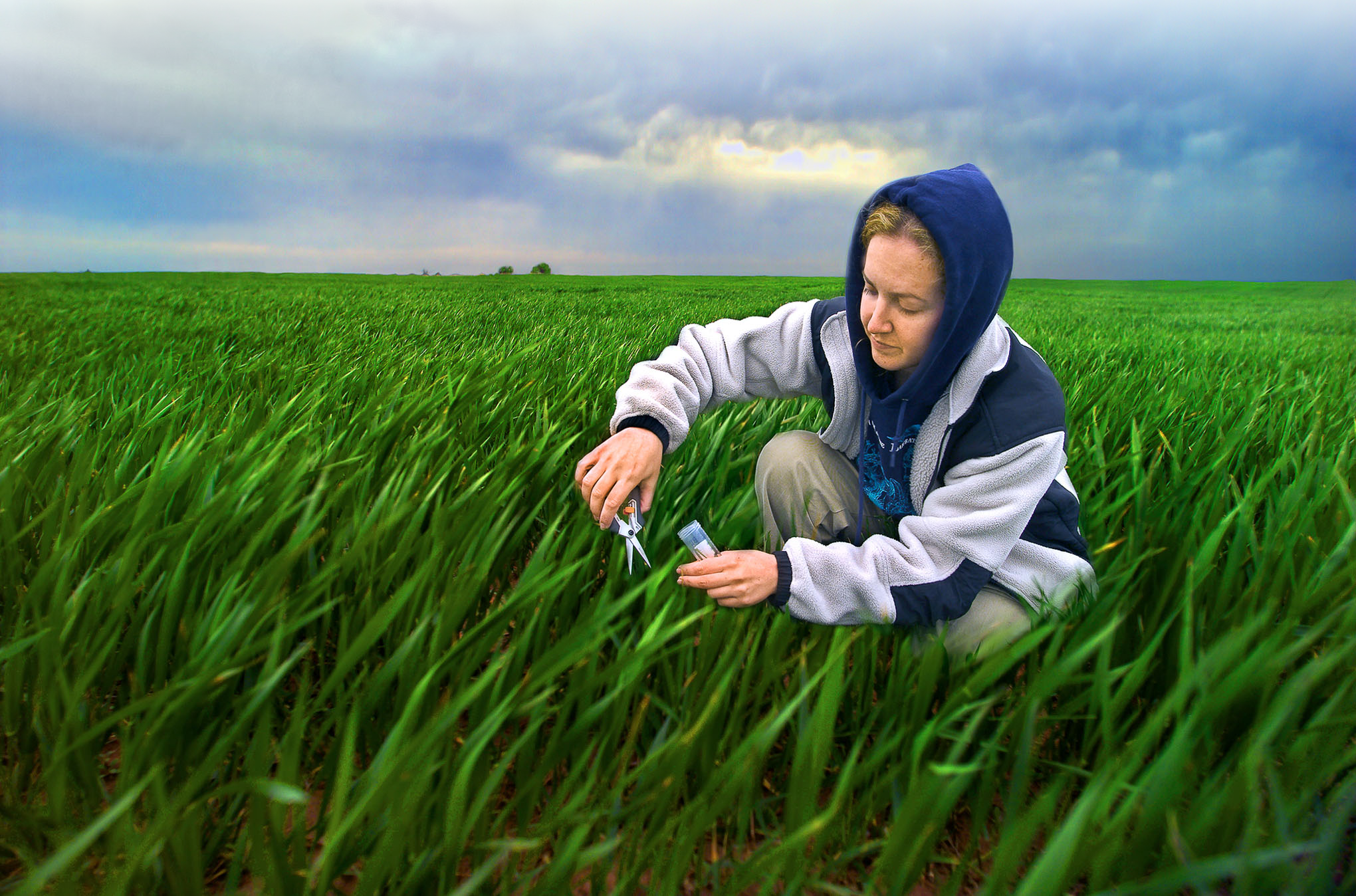 photo of woman collecting grass samples from a field